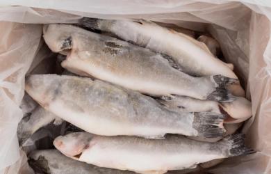 Đi mua bán, tránh xa 4 loại cá này vì 'bẩn nhất chợ', chẳng những không có dinh dưỡng mà còn gây bệnh